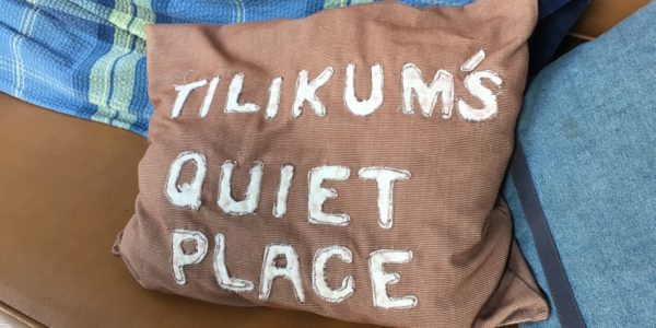 Quiet Place Pillow