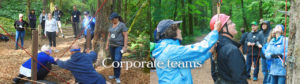 camp-tilikum-challenge-course-corporate-teams
