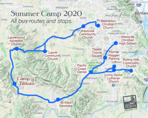 all-bus-routes-and-stops