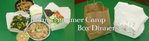 summer-camp-box-dinners
